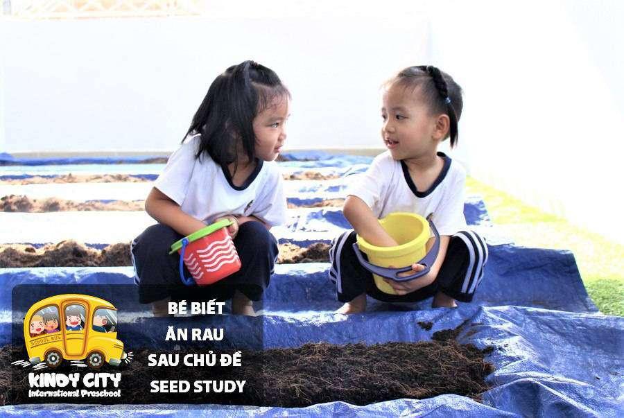 be biet an rau sau chu de seed study hinh 01