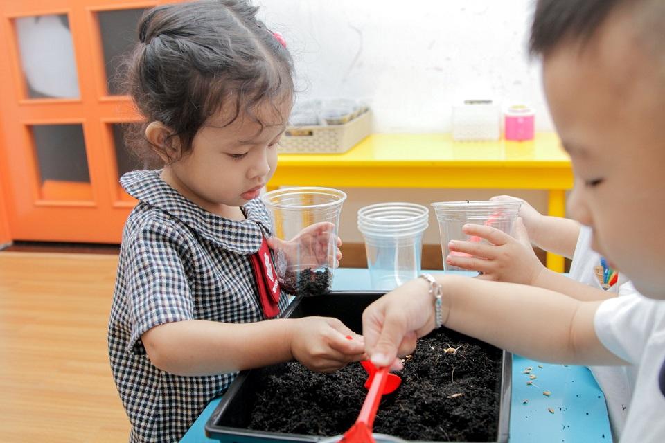 Lớp Koala, các em đã chuẩn bị quà cho mẹ bằng cách trồng lúa từ ly tái chế